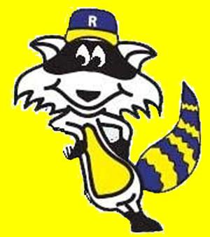 Image result for rockhill raccoons