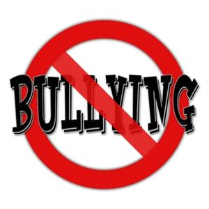 safety and security bullying definition