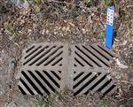 Image of drain for stormwater management page
