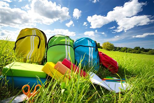 Backpacks and books in grass under blue skies